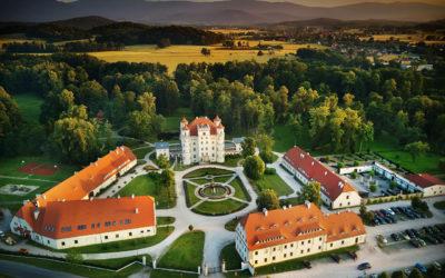 Październik w Pałacu